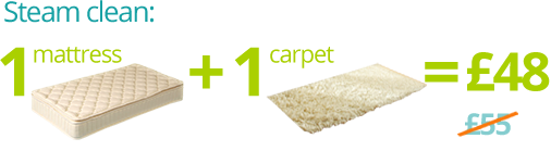 Steam Mattress and Carpet Cleaning for Just £48