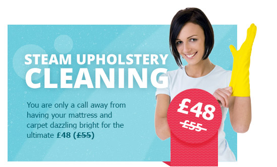 Steam Upholstery Cleaning Specials