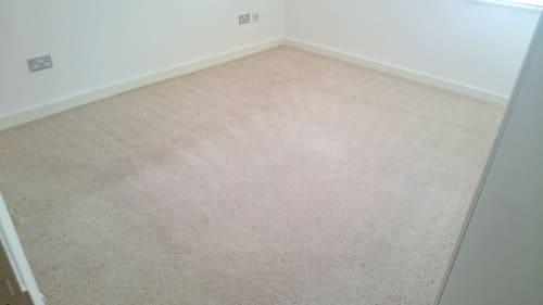Carpet Cleaning Eden Park BR3 Project