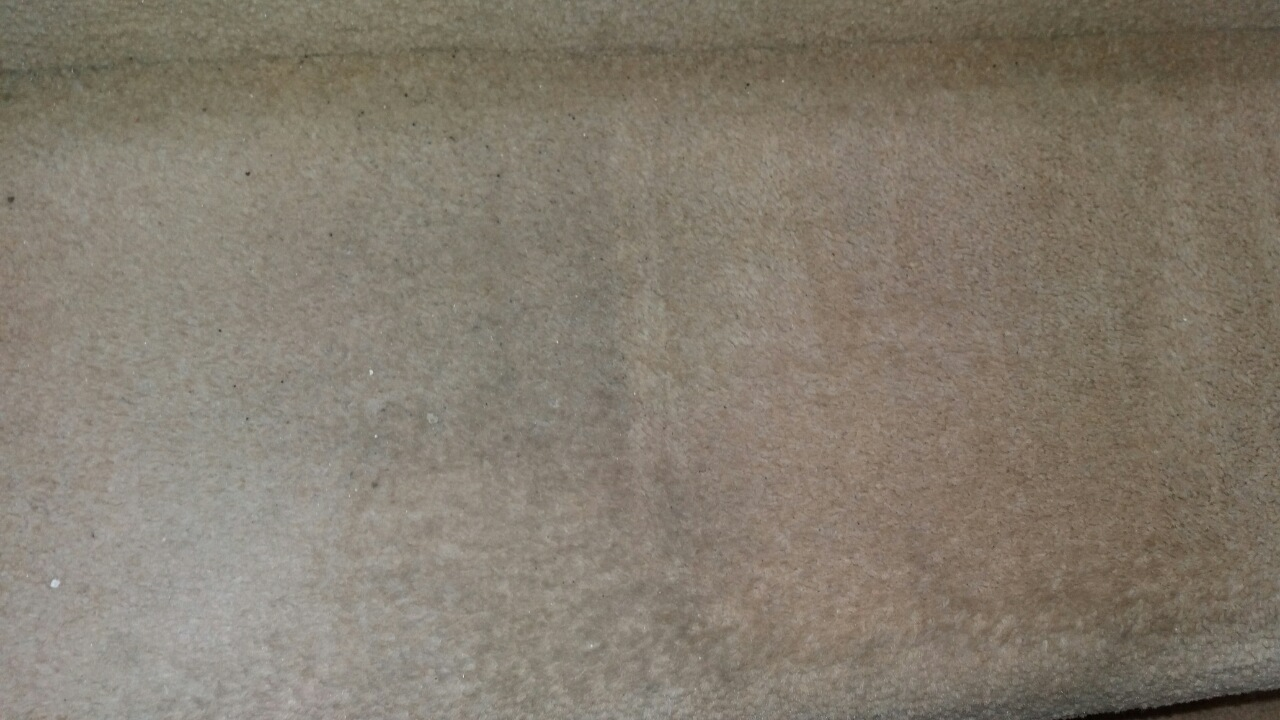 Carpet Cleaning Petts Wood BR5 Project