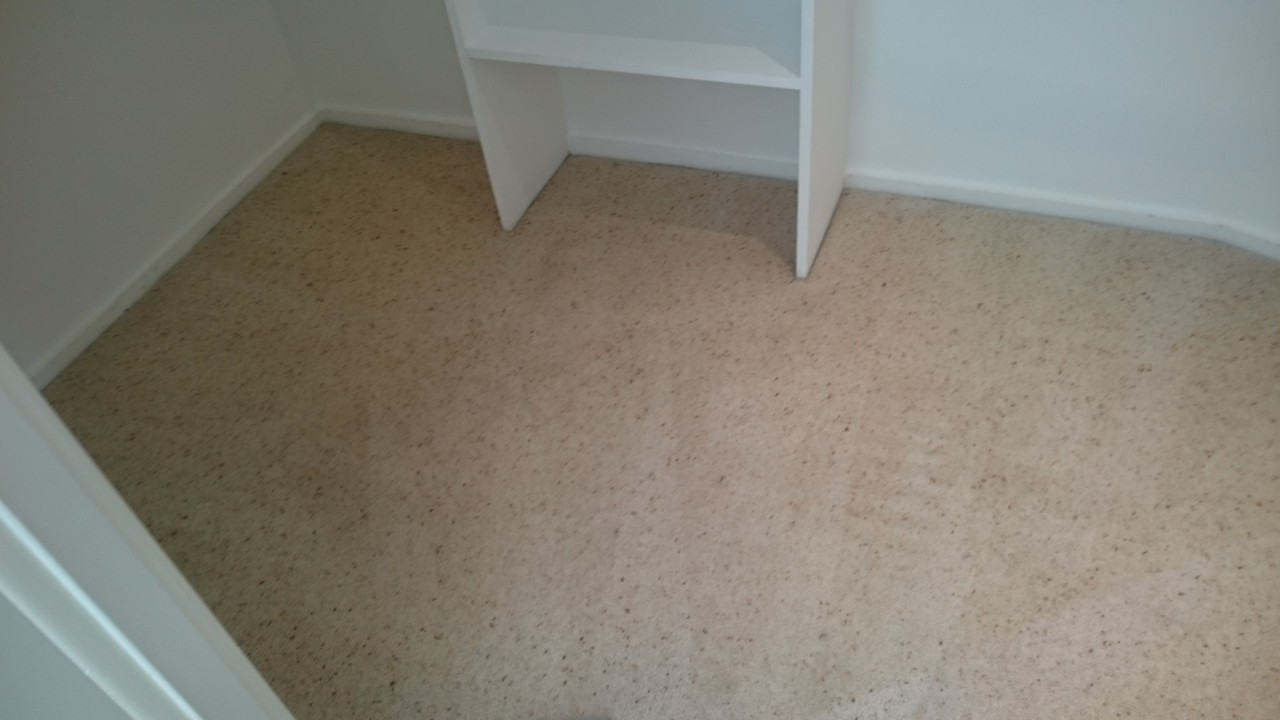 Carpet Cleaning North End DA8 Project