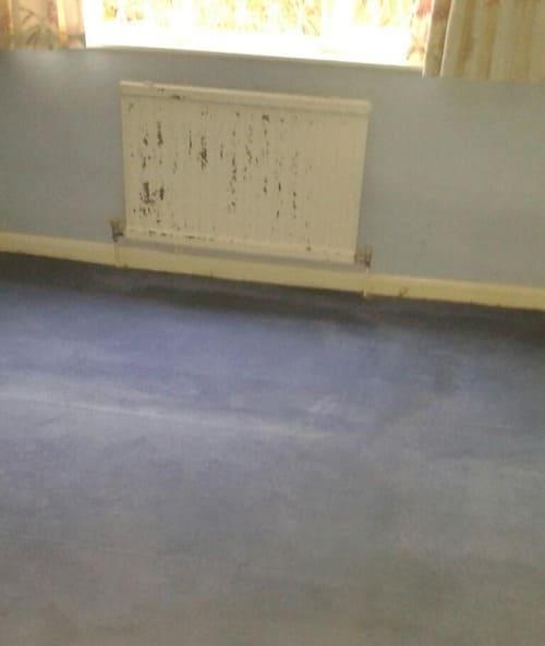 Carpet Cleaning West Ham E13 Project