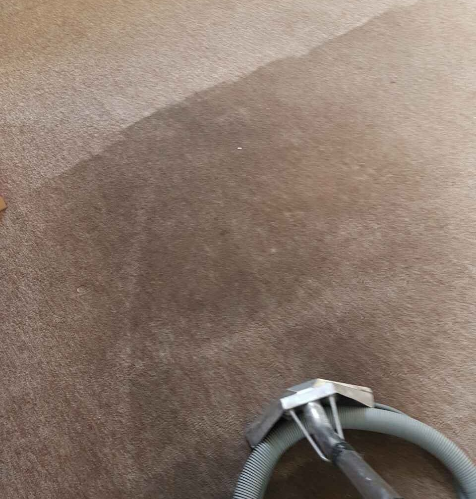 Carpet Cleaning Old Ford E3 Project