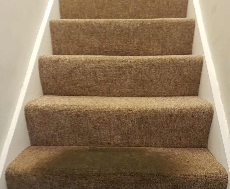 Carpet Cleaning Ewell KT17 Project