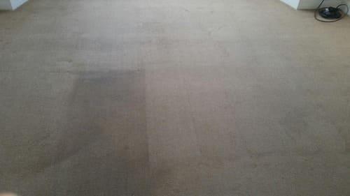 Carpet Cleaning Grange Park N21 Project