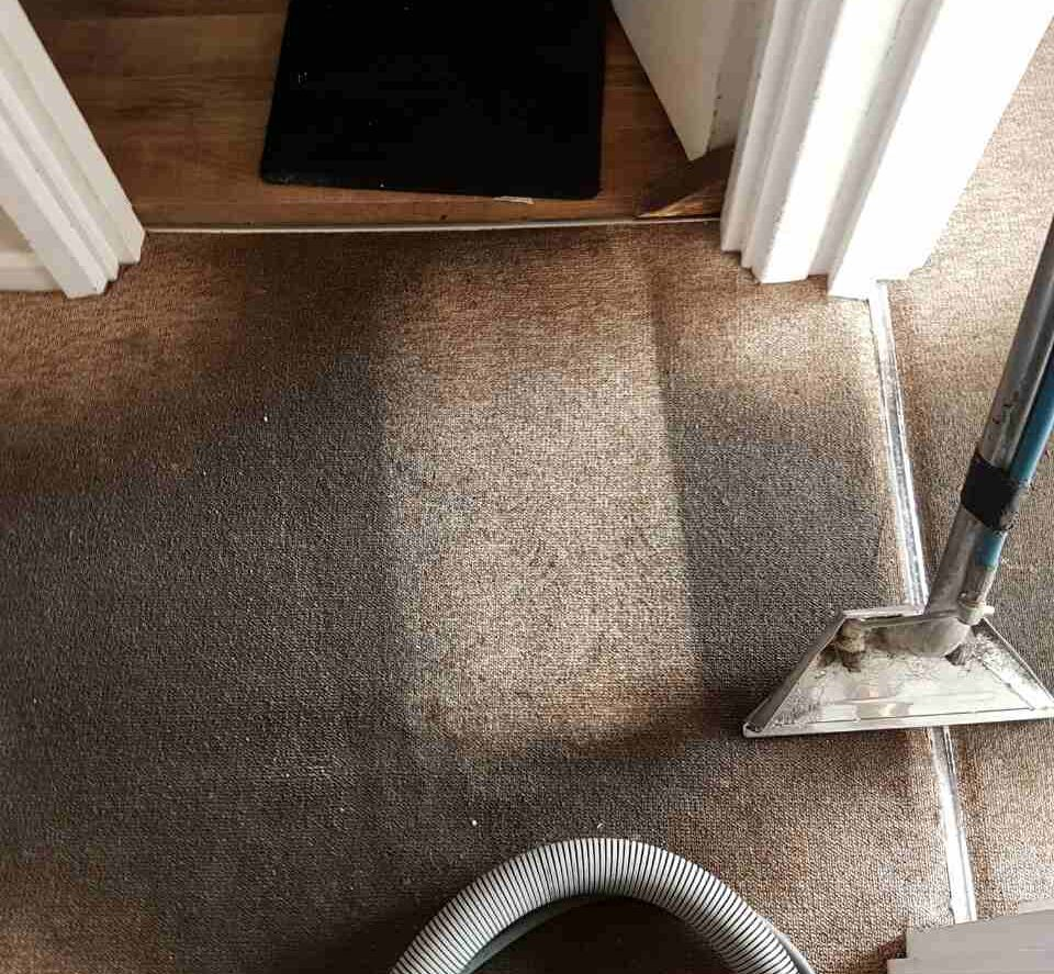 Carpet Cleaning Brondesbury NW6 Project