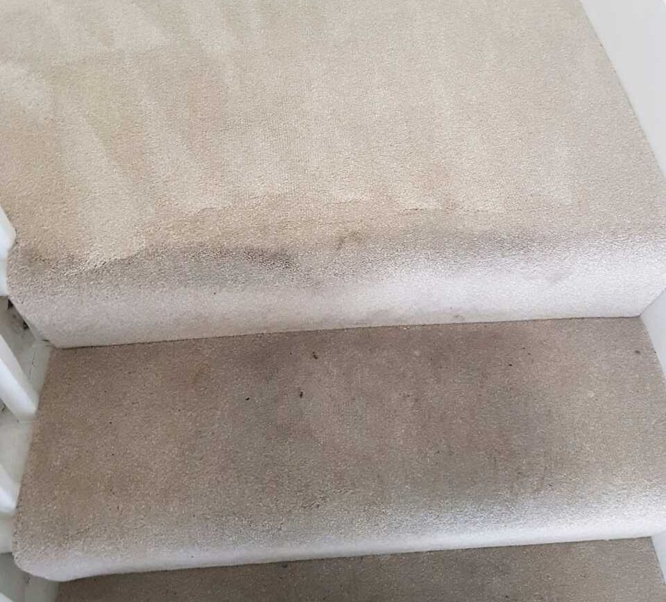 Carpet Cleaning Walworth SE17 Project