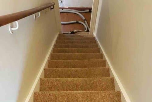 Carpet Cleaning Honor Oak SE23 Project