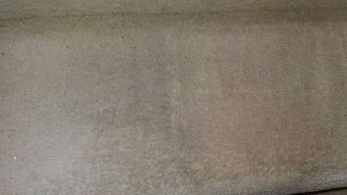Carpet Cleaning Deptford SE8 Project
