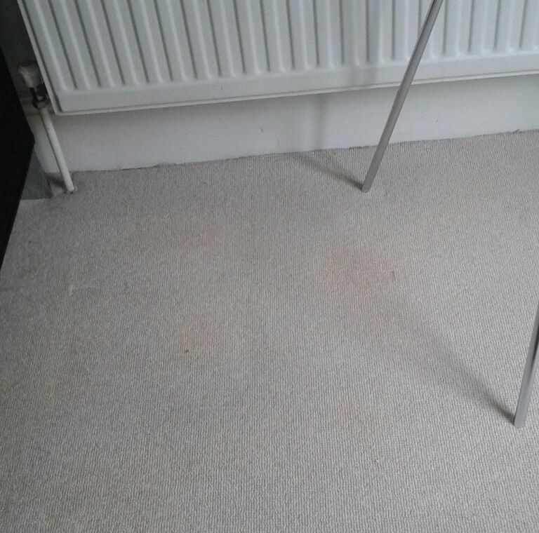 Carpet Cleaning South Wimbledon SW19 Project