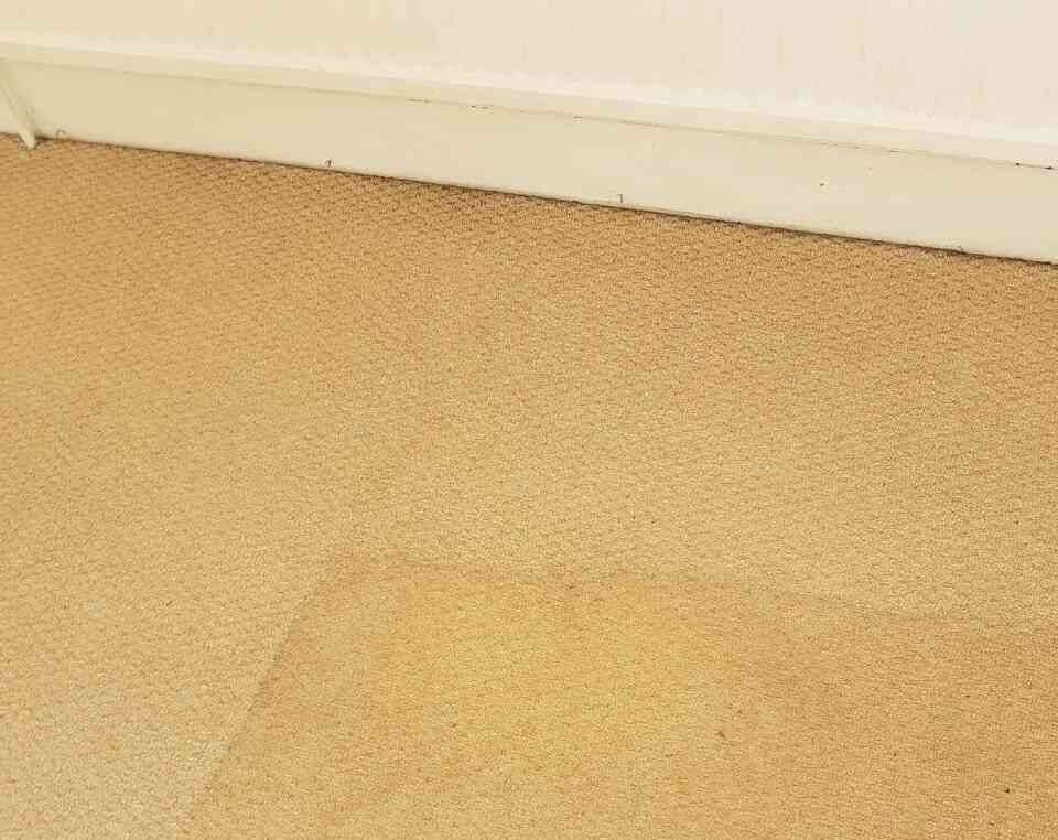 Carpet Cleaning St Giles WC1 Project