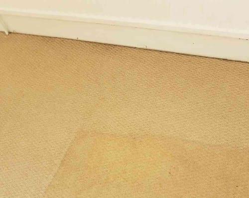 Carpet Cleaning Bankside SE1 Project