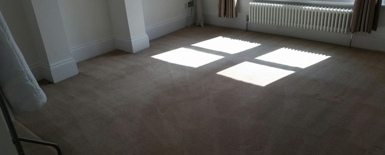 Carpet Cleaning Dulwich SE21 Project